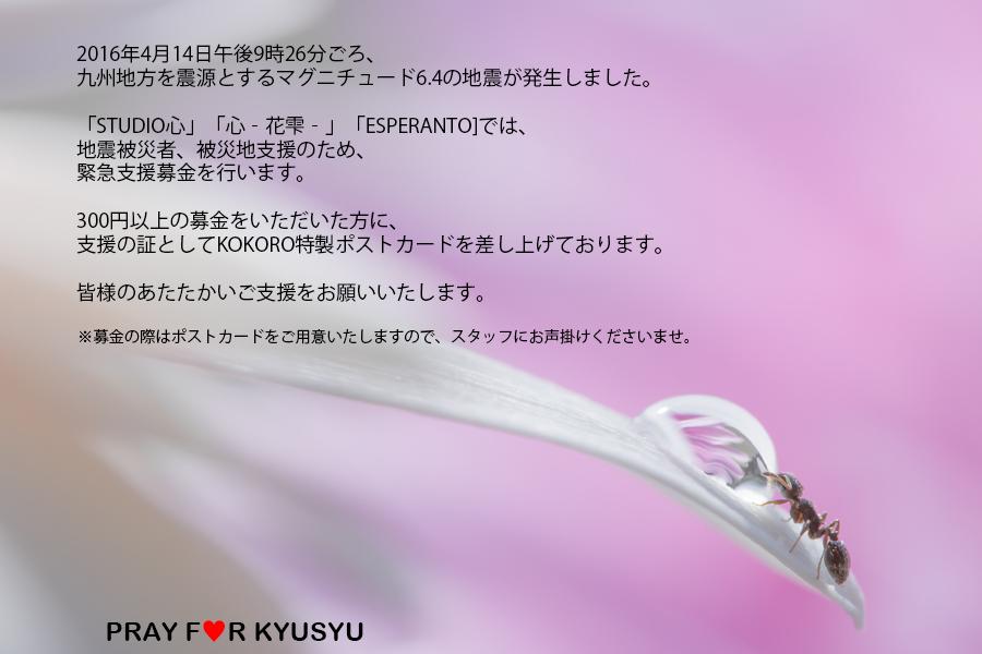 ☆『心』基金☆