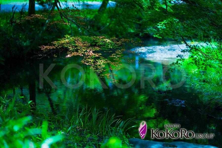 まほろばの京都新緑水明り~比叡山・延暦寺~